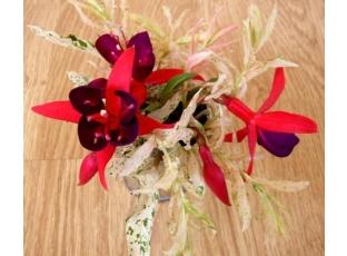 Řezané květiny z našich zahrad aneb co zahrada dá II. díl