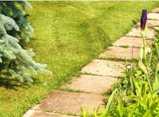 Jak pečovat o chodníky a terasy?