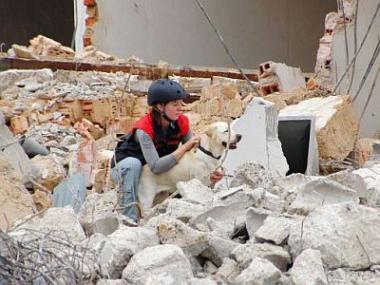 Reálné kulisy staveniště posloužily psům záchranářům