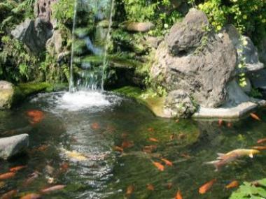 Logo Zahradní rybníčky pro náročné