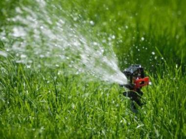 Jak zavlažovat zahradu v době dovolené
