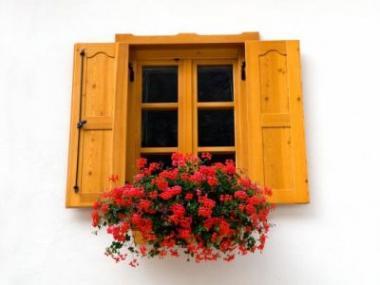 Okna a dveře z masivu zpříjemní bydlení