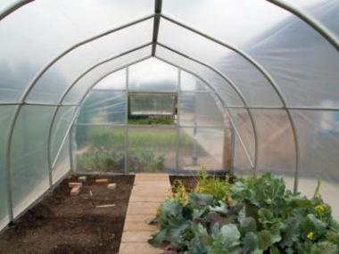 Jak zazimovat skleník a využít jej v zimě