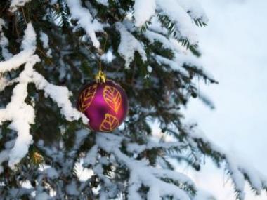 Logo Vánoční výzdoba oživí zasněženou zahradu