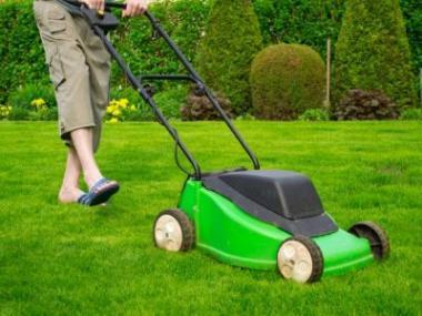 Logo Chcete mít pohnojený trávník, alebez plevele?
