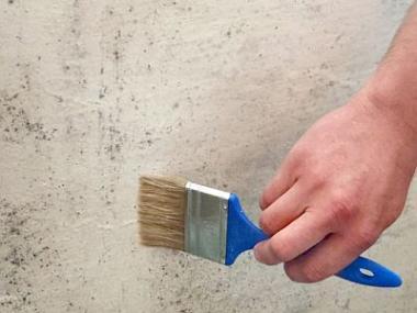 Jak účinně bojovat proti biotickému napadení stavebních konstrukcí