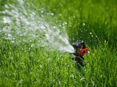 V horkém a suchém létě se zahrada bez závlahy neobejde
