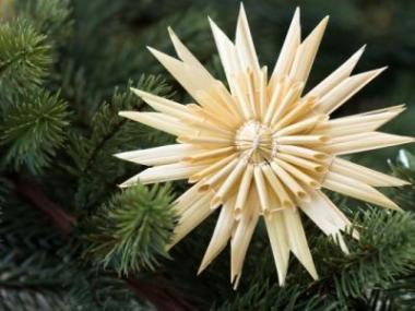 Logo Trendy vánoční dekorace vroce 2013