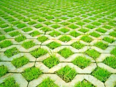 Kam se hodí vegetační dlažba?