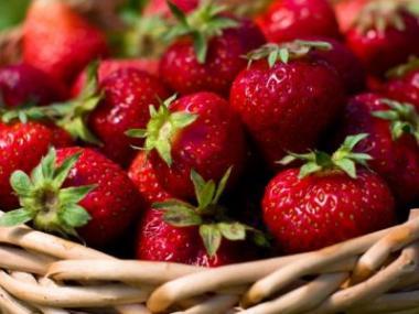 Logo Jak pěstovat jahody namalé ploše, anemuset se při sklizni ohýbat