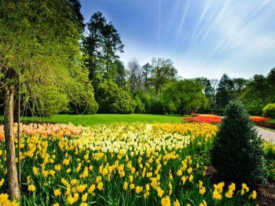 Logo Zahradní akrajinná tvorba obnovuje rozmanitost naší krajiny