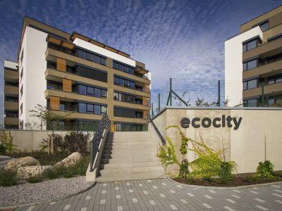 Nová zelená úsporám nepodpoří pasivní byty