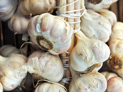 Jakými způsoby uskladnit česnek