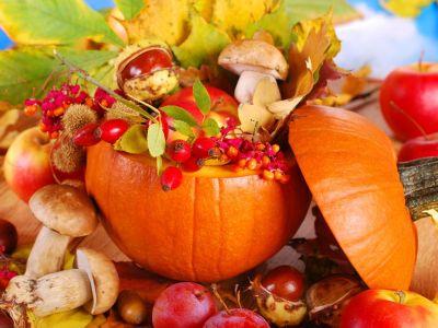 Logo Oživte svůj domov izahradu nápaditými podzimními dekoracemi