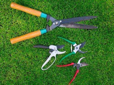 Logo Vybíráme zahradní nůžky