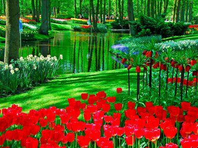 Logo 5nejkrásnějších zahrad aparků Evropy