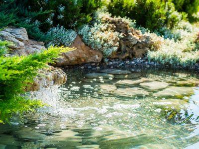 Čistěte vodu v jezírku pomocí germicidní lampy