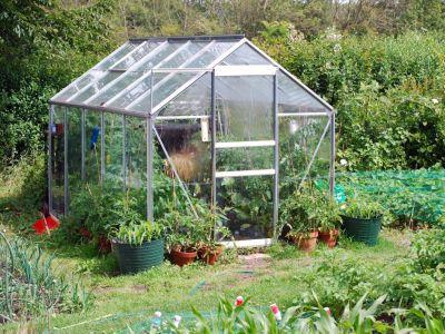 Používáte správně skleník?