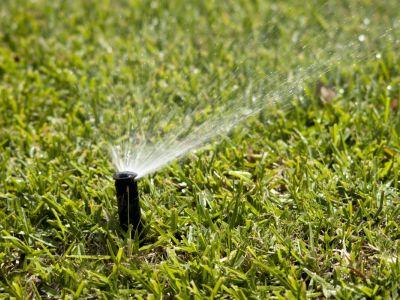 Jak pečovat o trávník v létě