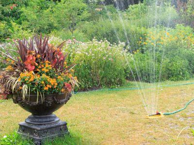 Jak ochránit trávník před vypálením slunečními paprsky