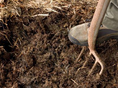 Jaká zvířata nám poskytnou kvalitní hnojivo?