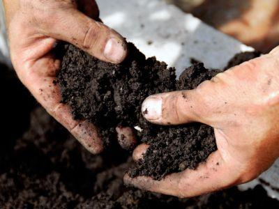 Jak poznáme, zda je v půdě dostatek živin?