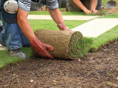 Logo Jak si položit trávník nasvém pozemku