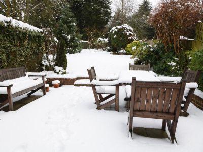 13 rad, jak v zimě pečovat o rostliny v zahradě