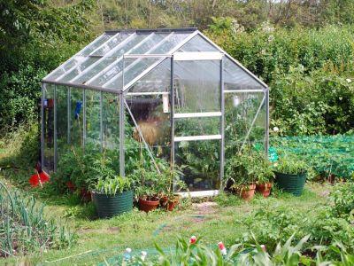 Chcete začít s pěstováním ve skleníku?