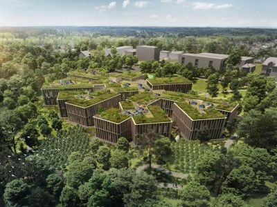 Nové sídlo lesní společnosti vrůstá do lesa a les do budovy
