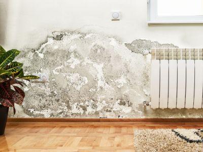 Jak se zbavit vlhkosti v domě díky elektrickému odvlhčovači