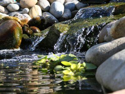 Jak si v zahradě vybudovat umělý potok