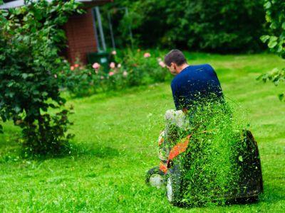 Logo Jak mulčovat trávu