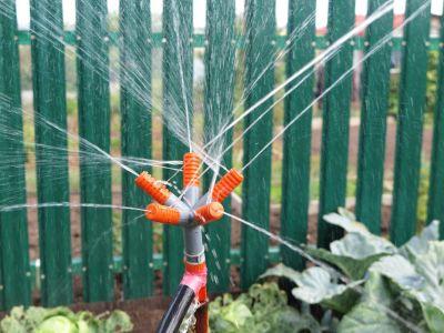 10 rad, jak se postarat o zahradu před odjezdem na dovolenou