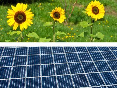 Logo Startují další dotace zprogramu Nová zelená úsporám