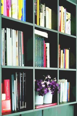Foto Holandská květinářská kancelář. Oxalis.