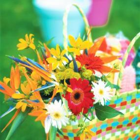 Květiny v nákupní tašce.