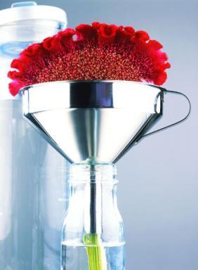 Foto Holandská květinářská kancelář. Celosia.