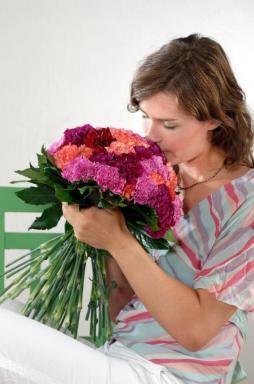 KARAFIÁT. Foto Holandská květinářská kancelář.