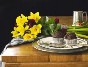 Foto Holandská květinářská kancelář. Narcis