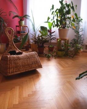 Foto Skříně na míru s.r.o. - vestavěné skříně a přírodní podlahy