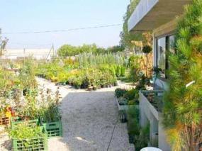 Foto: Zahradnictví ANTIARIS