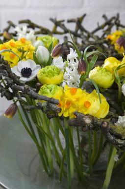Foto: Holandská květinářská kancelář, moderní styl