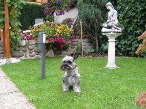 Foto: DOUPOVEC - péče o Vaši zahradu