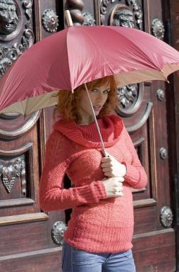 Ilustrační foto (www.shutterstock.com), historické vchodové dveře