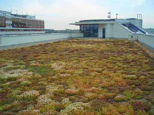 Foto: EKOLIA - zahradnická společnost