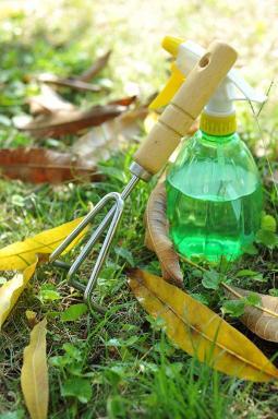 Ilustrační foto (www.shutterstock.com), pletí a postřik