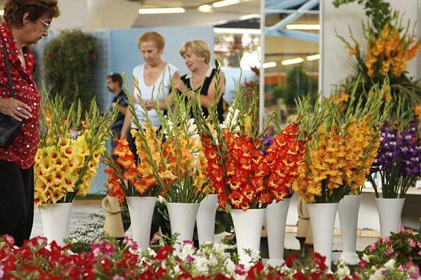 Foto: Výstaviště Flora Olomouc