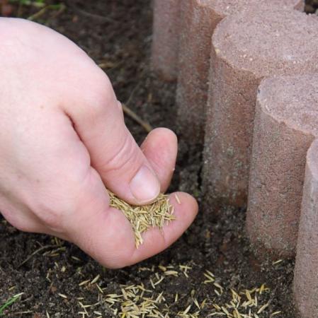 Ilustrační foto (www.shutterstock.com), betonová obruba