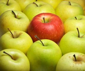 Ilustrační foto (www.shutterstock.com), jablka - správné uložení&nbspv&nbspjedné vrstvě